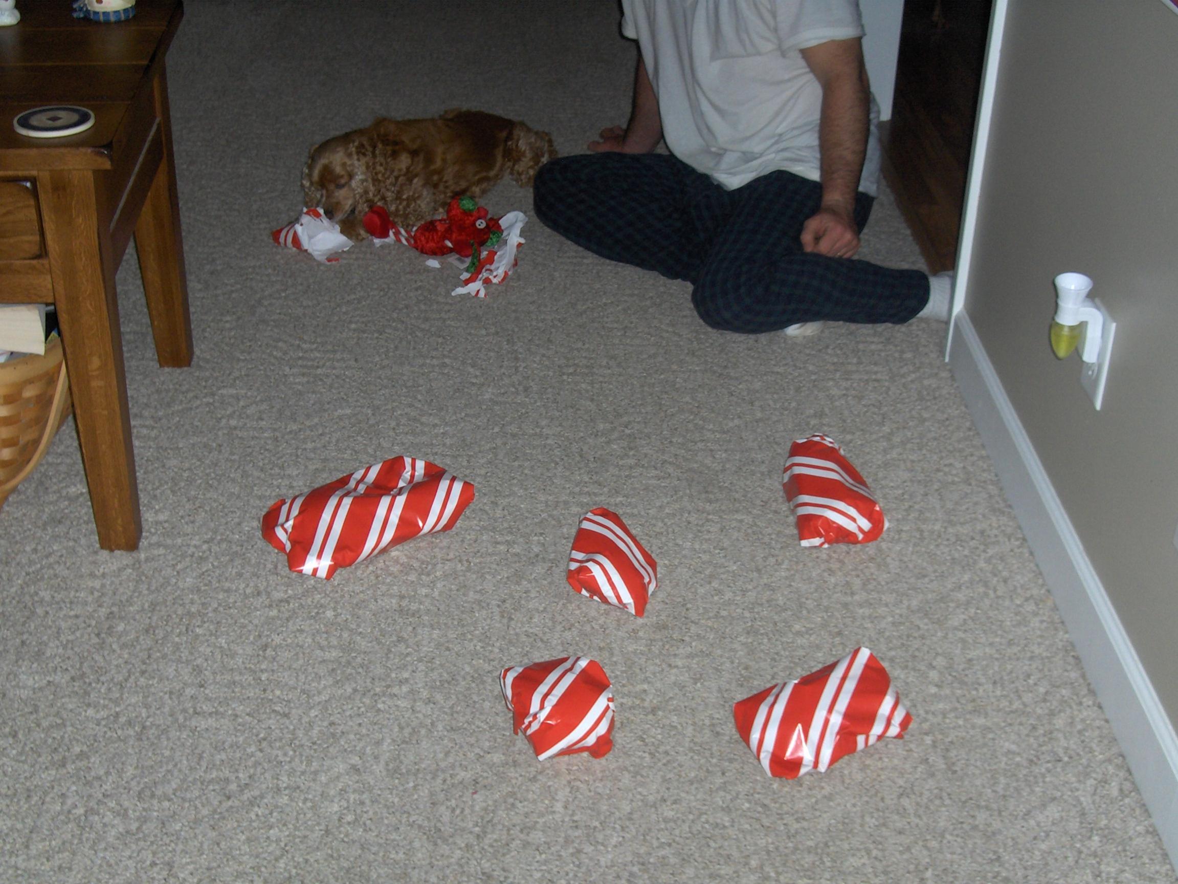 A dogs Christmas-001.jpg