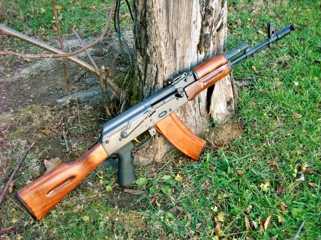 AK47 or AK74?-100_0718.jpeg