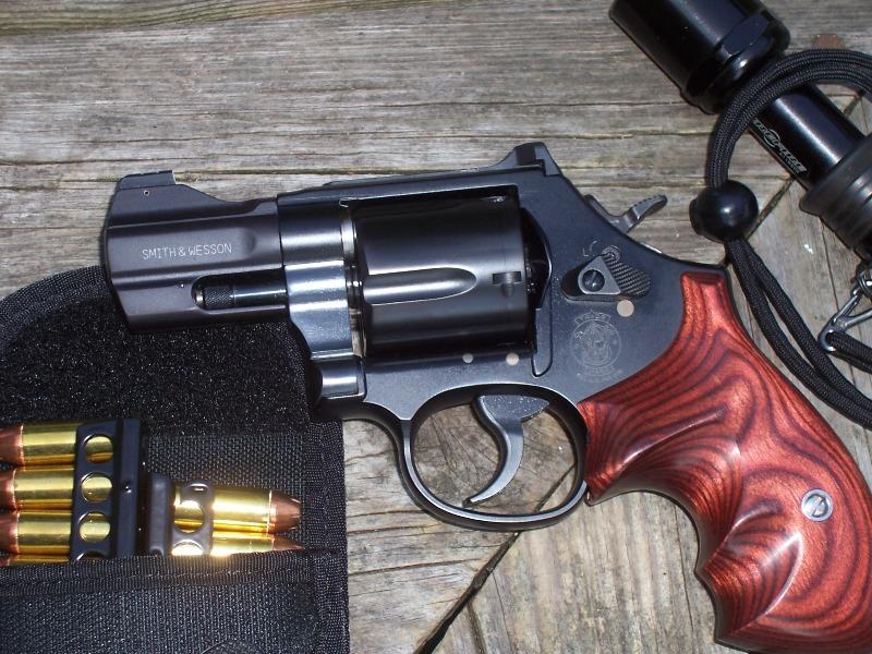 New holster from Little Bear Holsters-100_0735.jpg