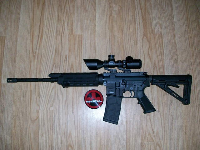 Looking to take the plunge on AR-100_1359.jpg