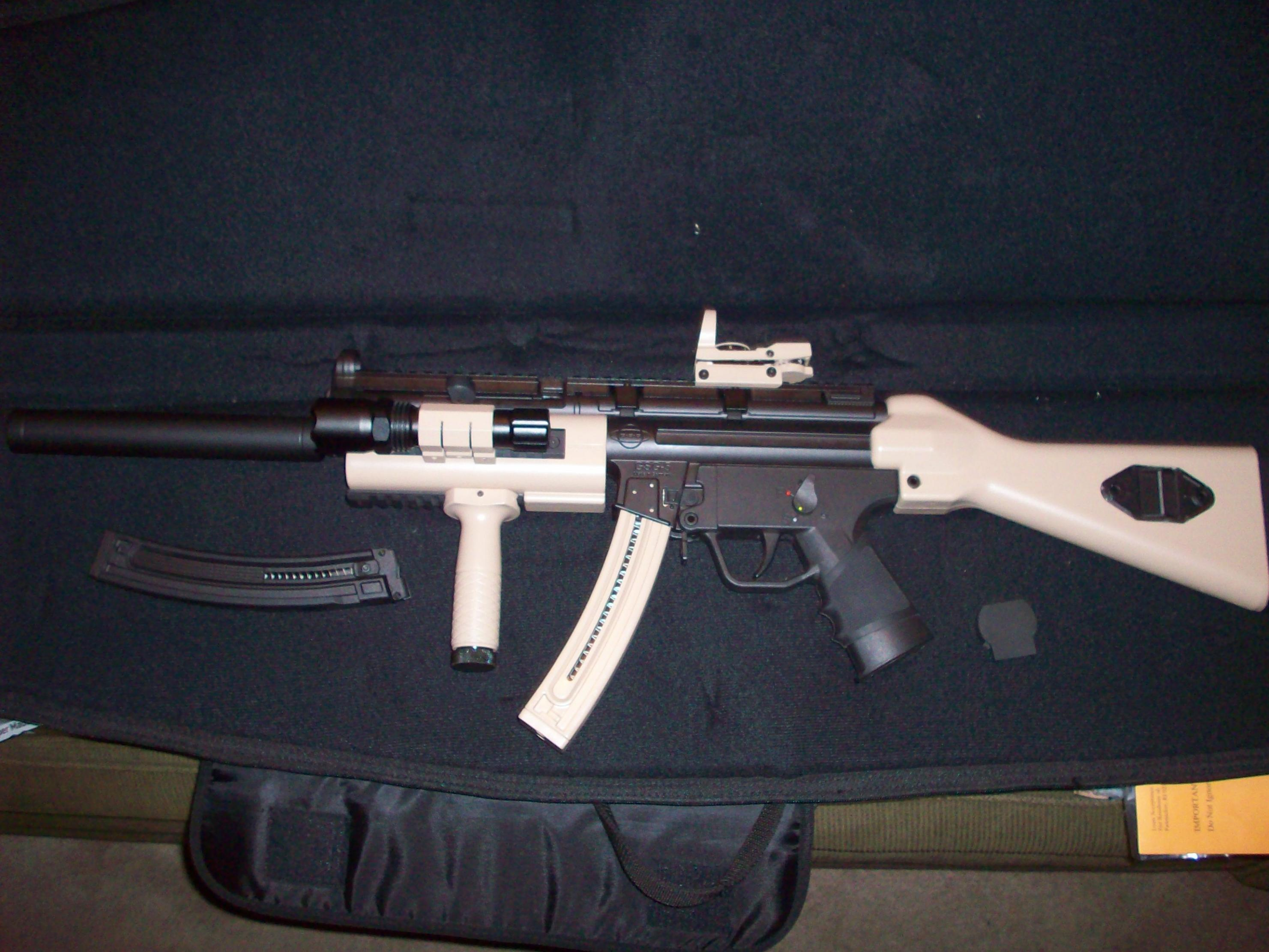 Smith Wesson mp15-22-100_3306.jpg
