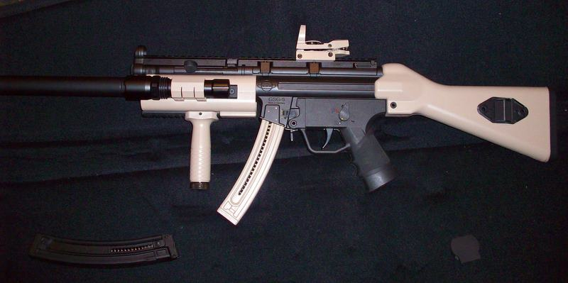 Smith Wesson mp15-22-100_3307.jpg