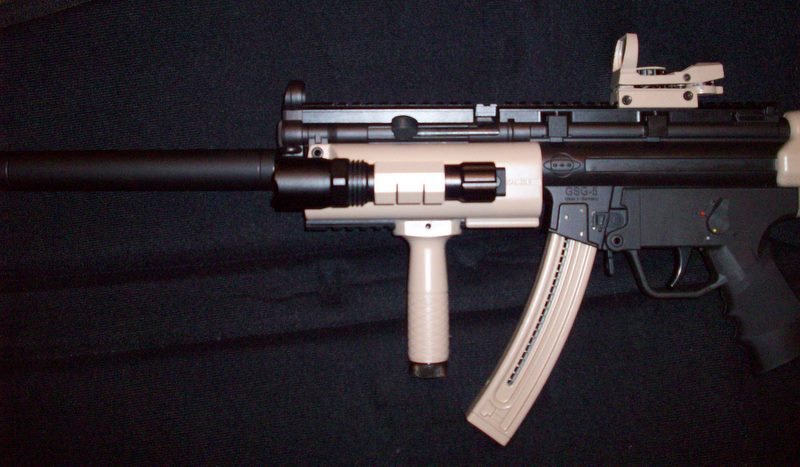 Smith Wesson mp15-22-100_3308.jpg