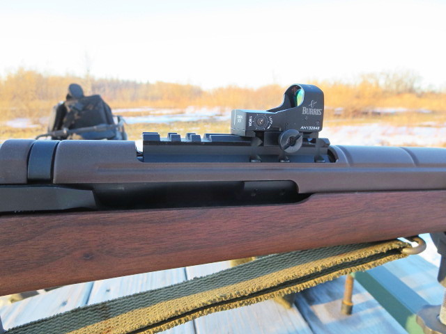 My M1A... New sight-2.jpg