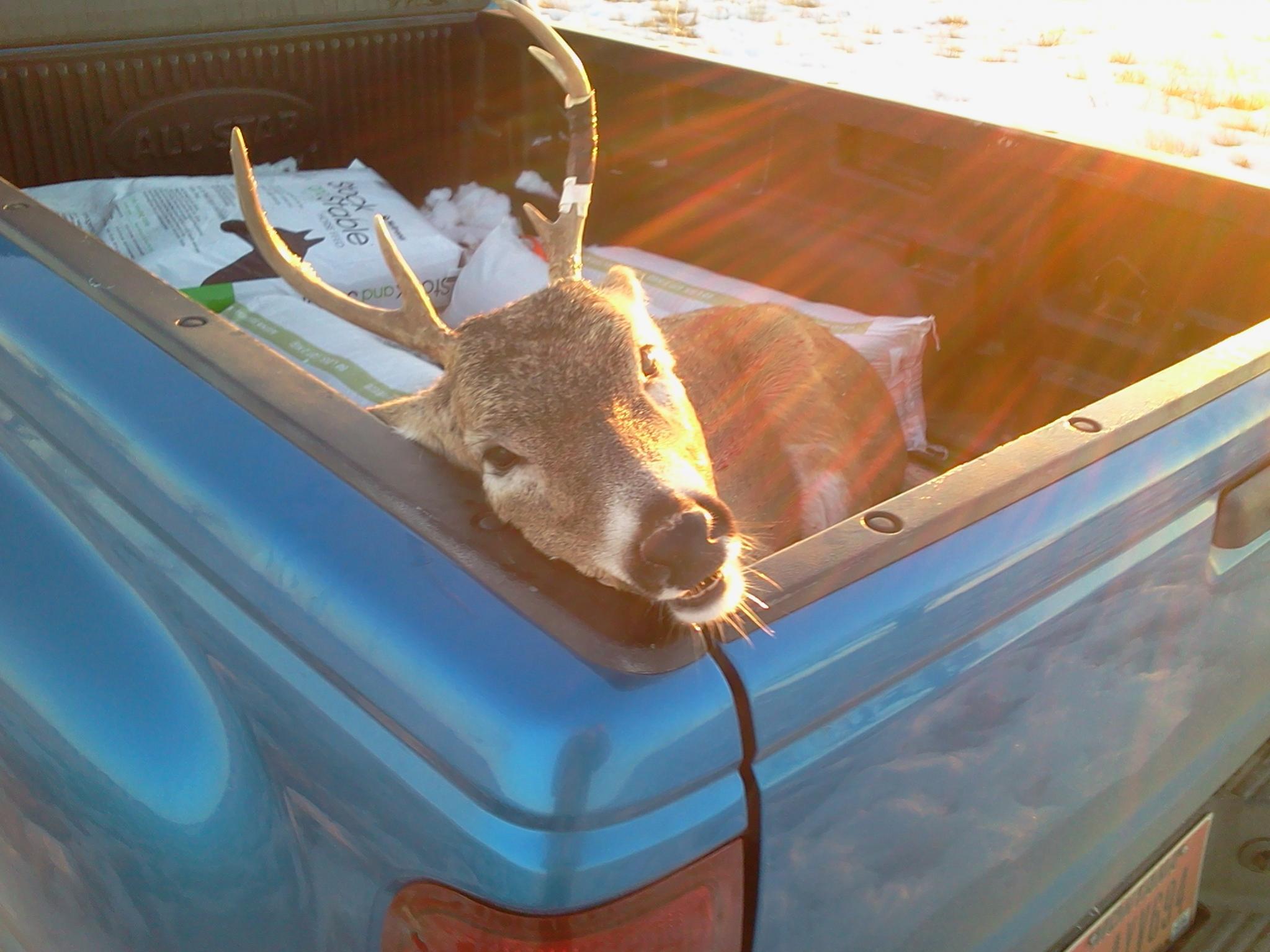 Went Deer Huntin' Again...-2012-11-15-16.17.45.jpg