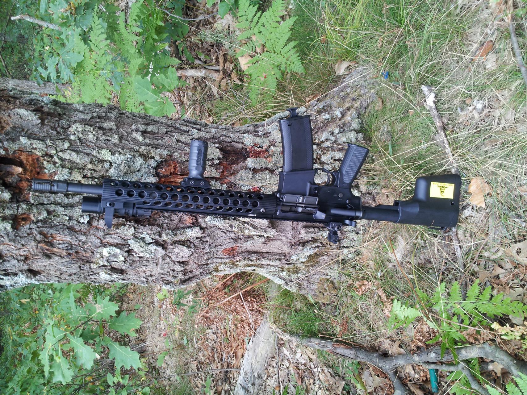 Troy Defense 5.56 Carbine-20120907_143942.jpg