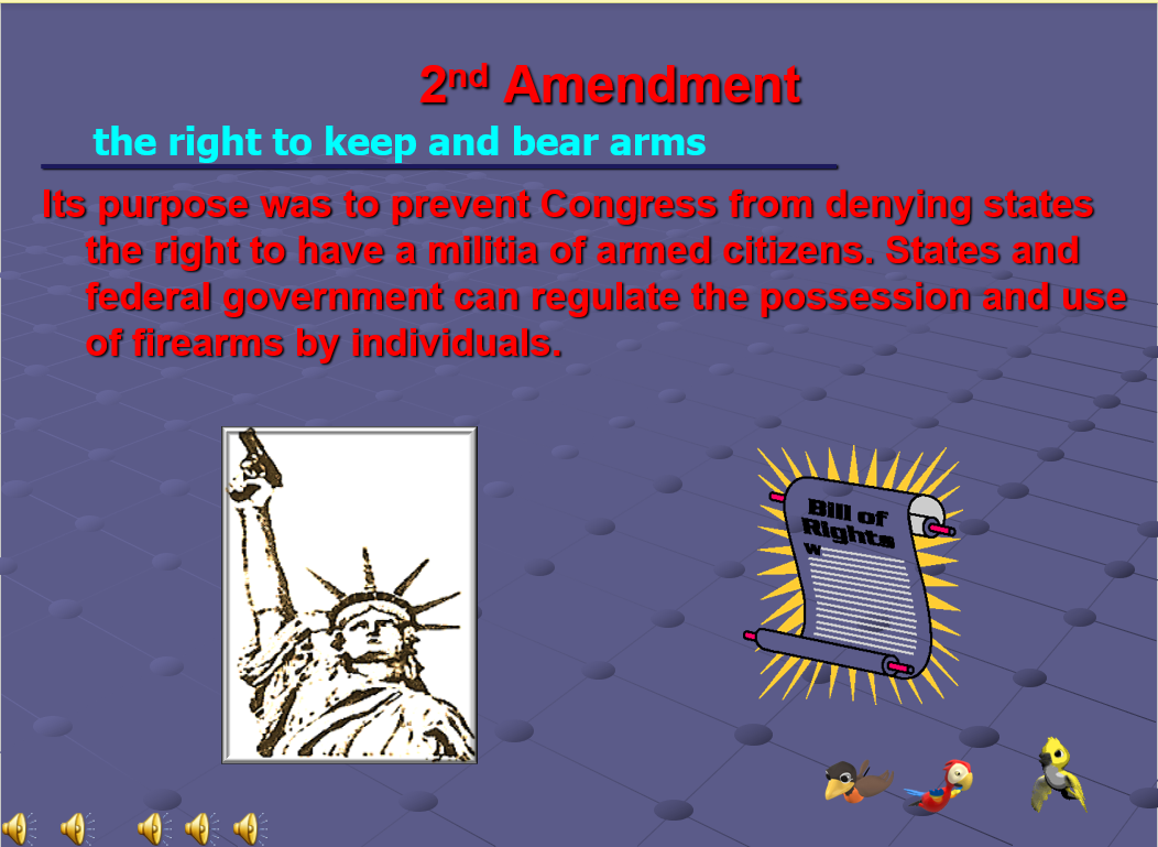 Public School's Teaching of the 2nd Amendment-3.png