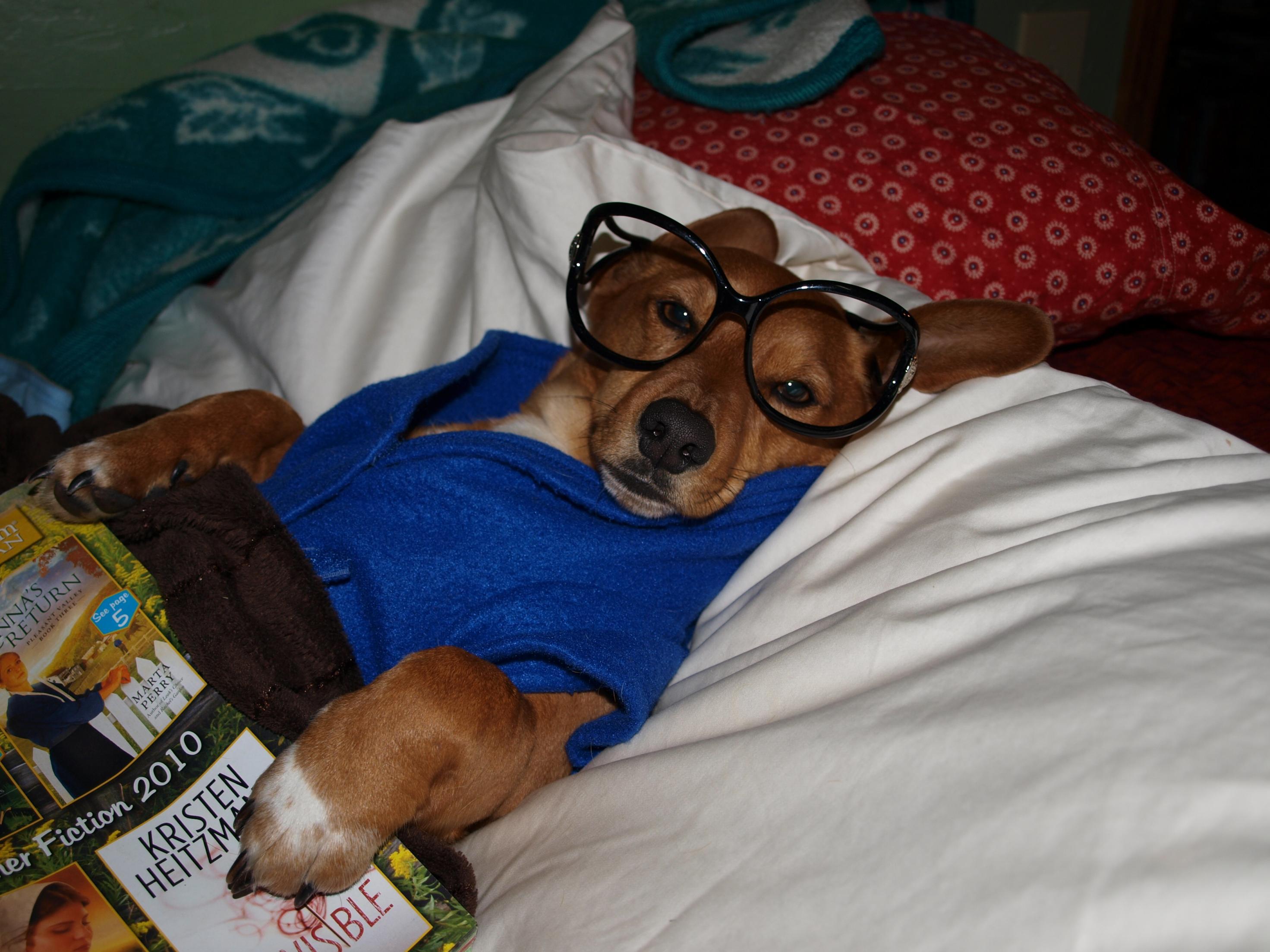I LOVE my puppy!!!!-308.jpg