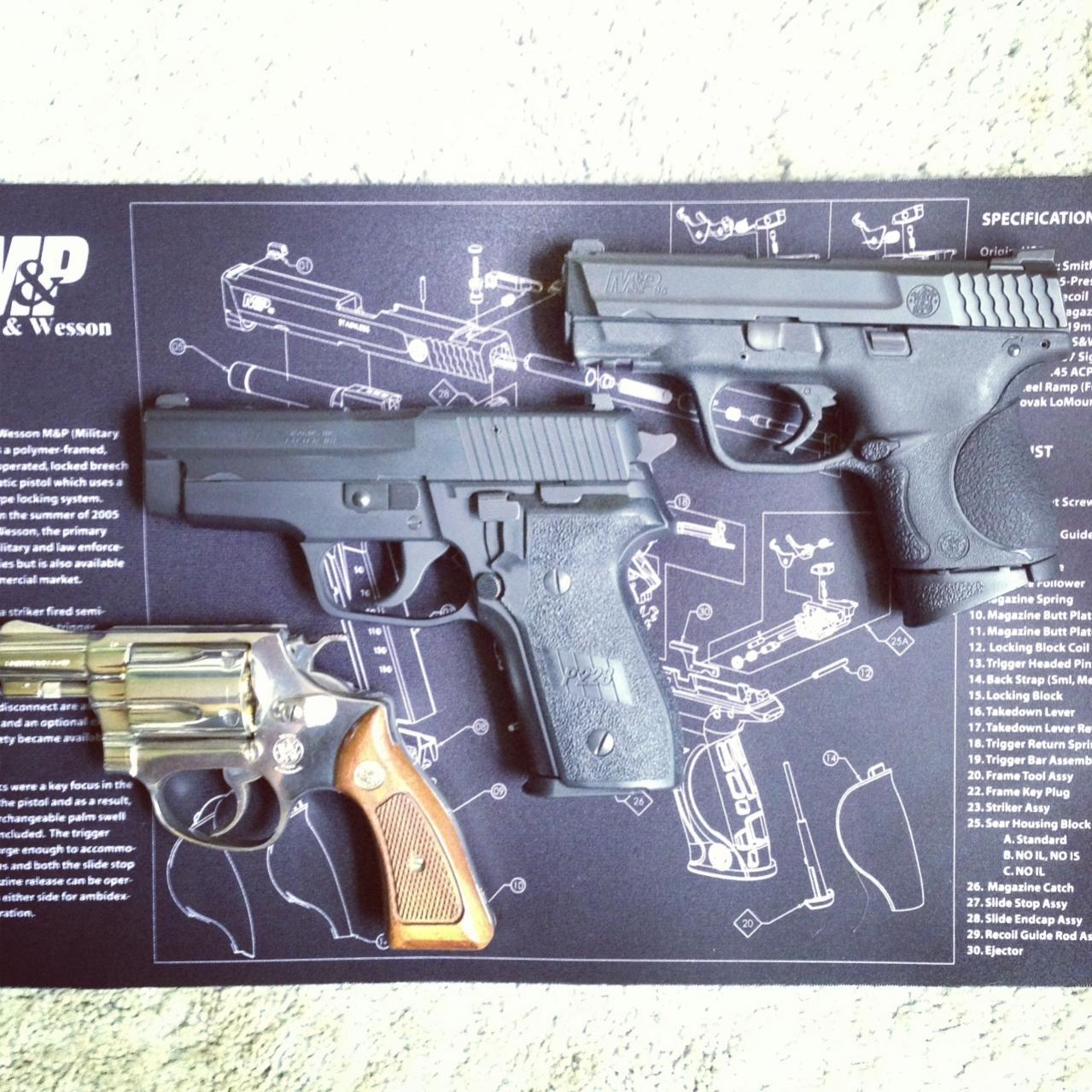 MY carry pistols!-3diag.jpg