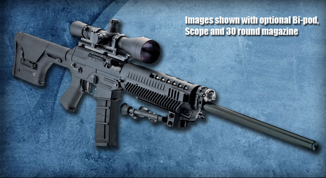 So what would be the alternative to the AR15?-556dmr-detail-bty.jpg
