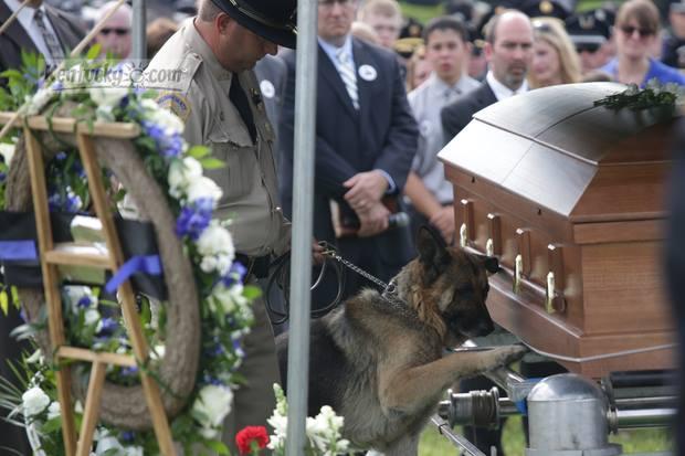 Officer Ellis's Dog says goodbye-954802_584731784894561_1149893668_n.jpg