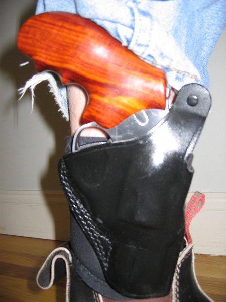 Post your SP-101 Holsters!-ankle.jpg