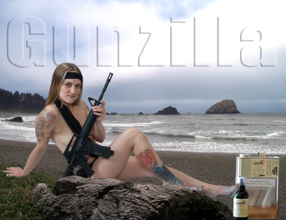Gunzilla, The worlds best gun cleaner.-beach.jpg