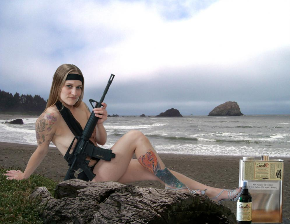 Gunzilla, The worlds best gun cleaner.-beach1.jpg