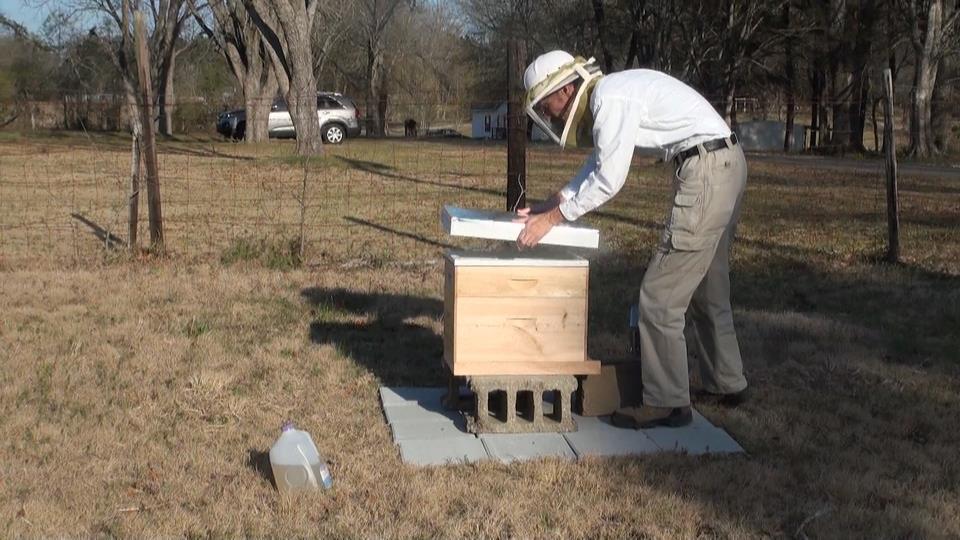 Bug out Bags-beekeeping.jpg