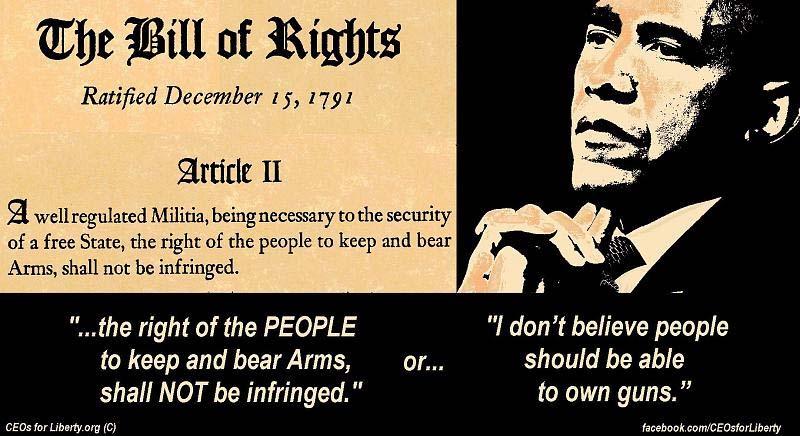 I collect Pro Second Amendment posters, so....-bill-rights-vs-obama.jpg