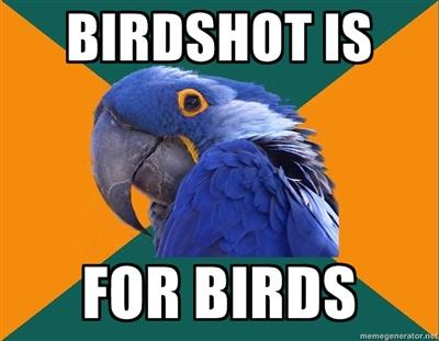 Best home defense shotgun ammo?-birdshot.jpg