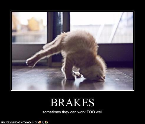 A purrfectly fun thread-brakes.jpg