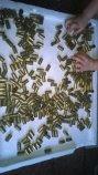 FS: 300 pieces of 45 brass-brass-45.3.jpg