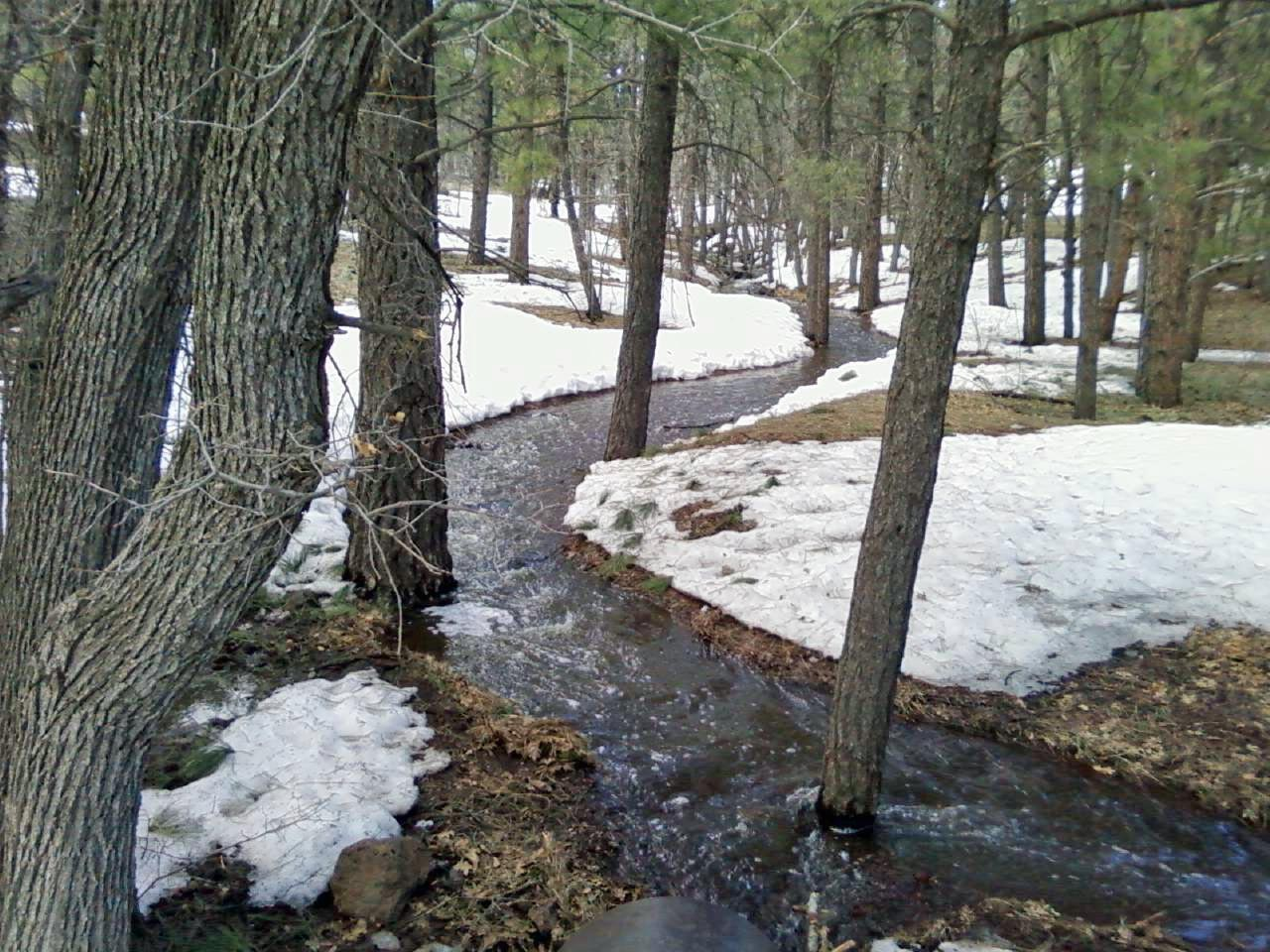Spring runoff in Flagstaff  AZ.-buffalo-park-03-08-09.jpg