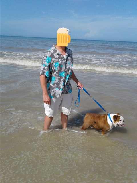 Post pics you like to take.  Vacation, home and so on.-bulldogatbeach.jpg
