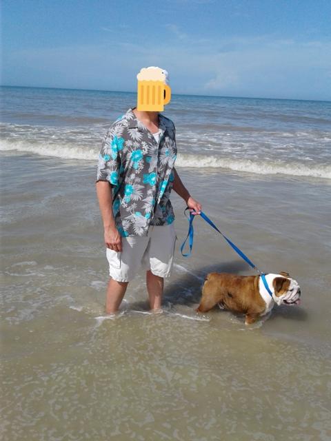 Post pics you like to take.  Vacation, home and so on.-bulldogatbeach.jpg