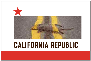 The Worst 2013 California Proposed Anti-gun/2A bills being reviewed-caflag2.png