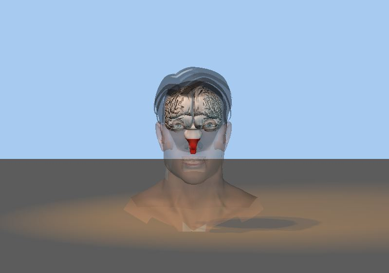 The head shot-capture.jpg
