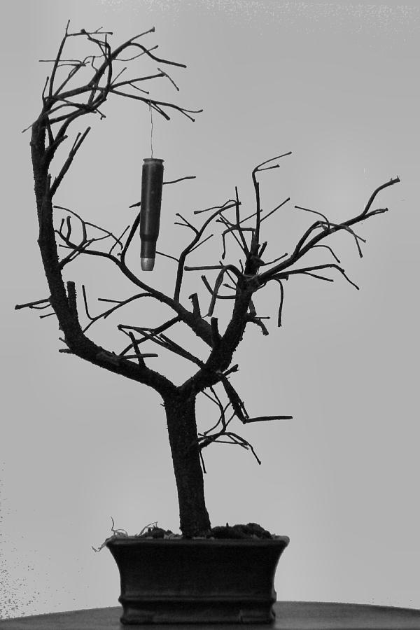 Random Thoughts (Part2)-cartridge-bare-tree.jpg