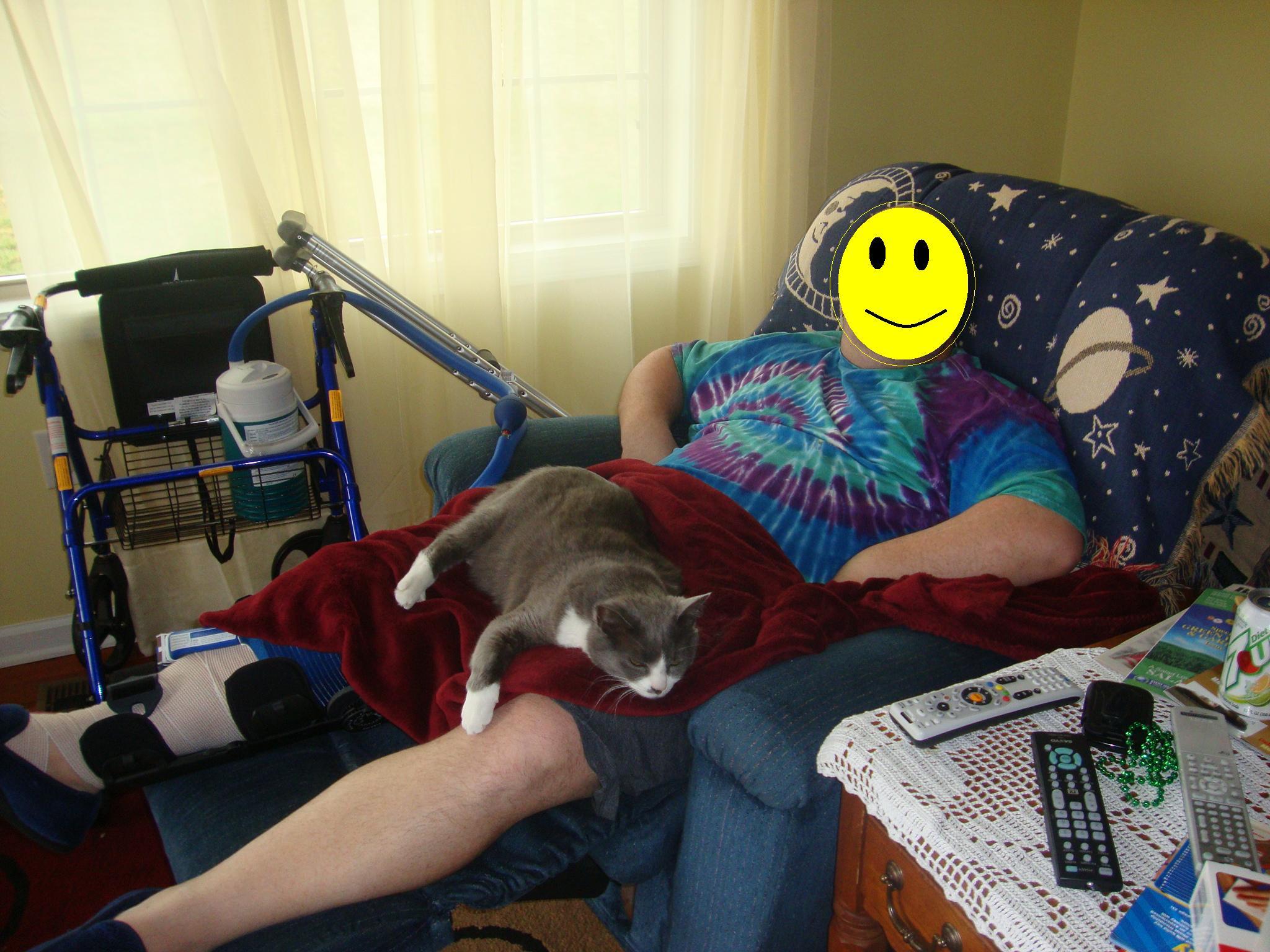 Cats Snore-cat1.jpg