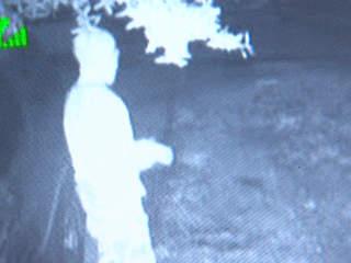 Four attempted burglaries in my neighborhood in the last month!!-cat_burglar_.jpg