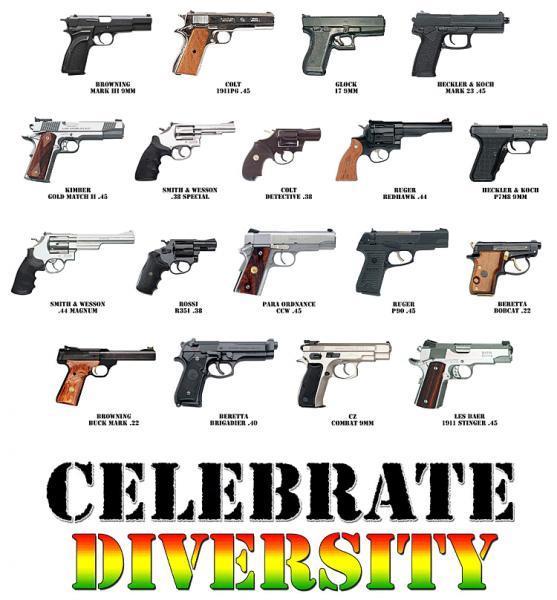 "Post your gun ""Motivational"" posters-celebrate_diversity_guns.jpg"