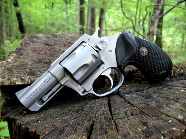 Low buck fun gun-charter_arms_bulldog_2.jpg