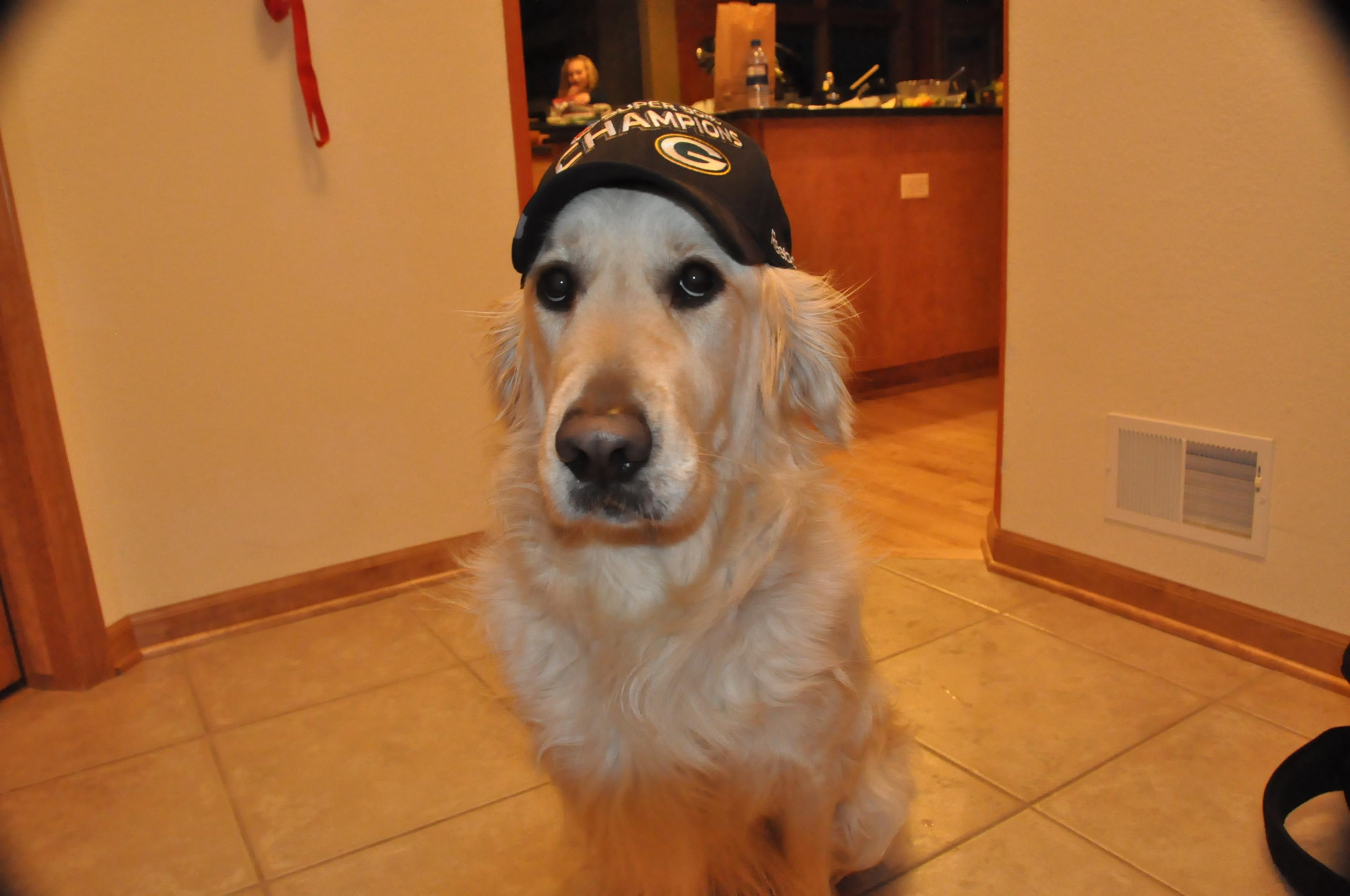 Off-Topic but 'In The News'...... what would YOU do for the family dog?-chase-sb-champs-hat.jpg