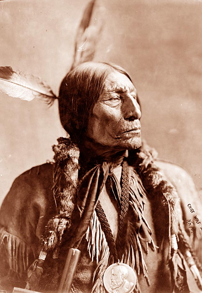 Excessive Rules and Regulations Anyone?  Excessive Police Powers?-cheyenne-chief.jpg