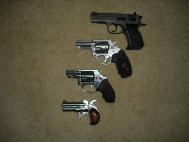 "I'm a ""cheap gun"" guy-chl-guns-001.jpg"