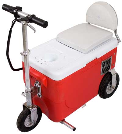 OK So I need a cart.-cooler-20scooter-20angled-20view.jpg