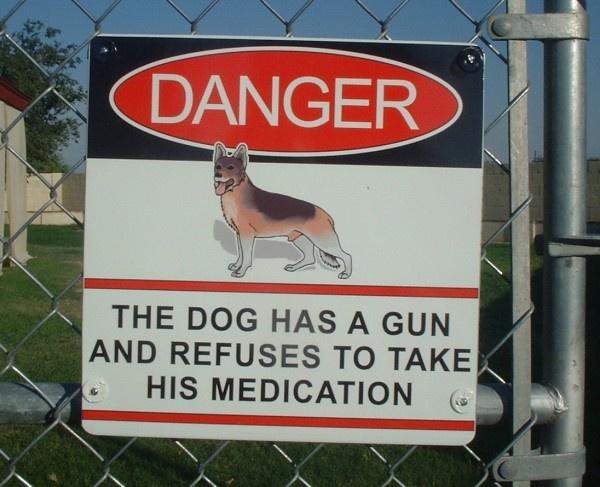 I got back-up-crazy-dog-gun.jpg