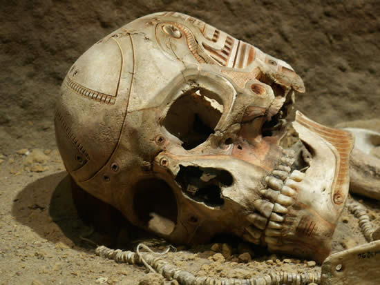 """Better than """"Lucy."""" Future archaeology will discover....-cyborg-skull.jpg"""