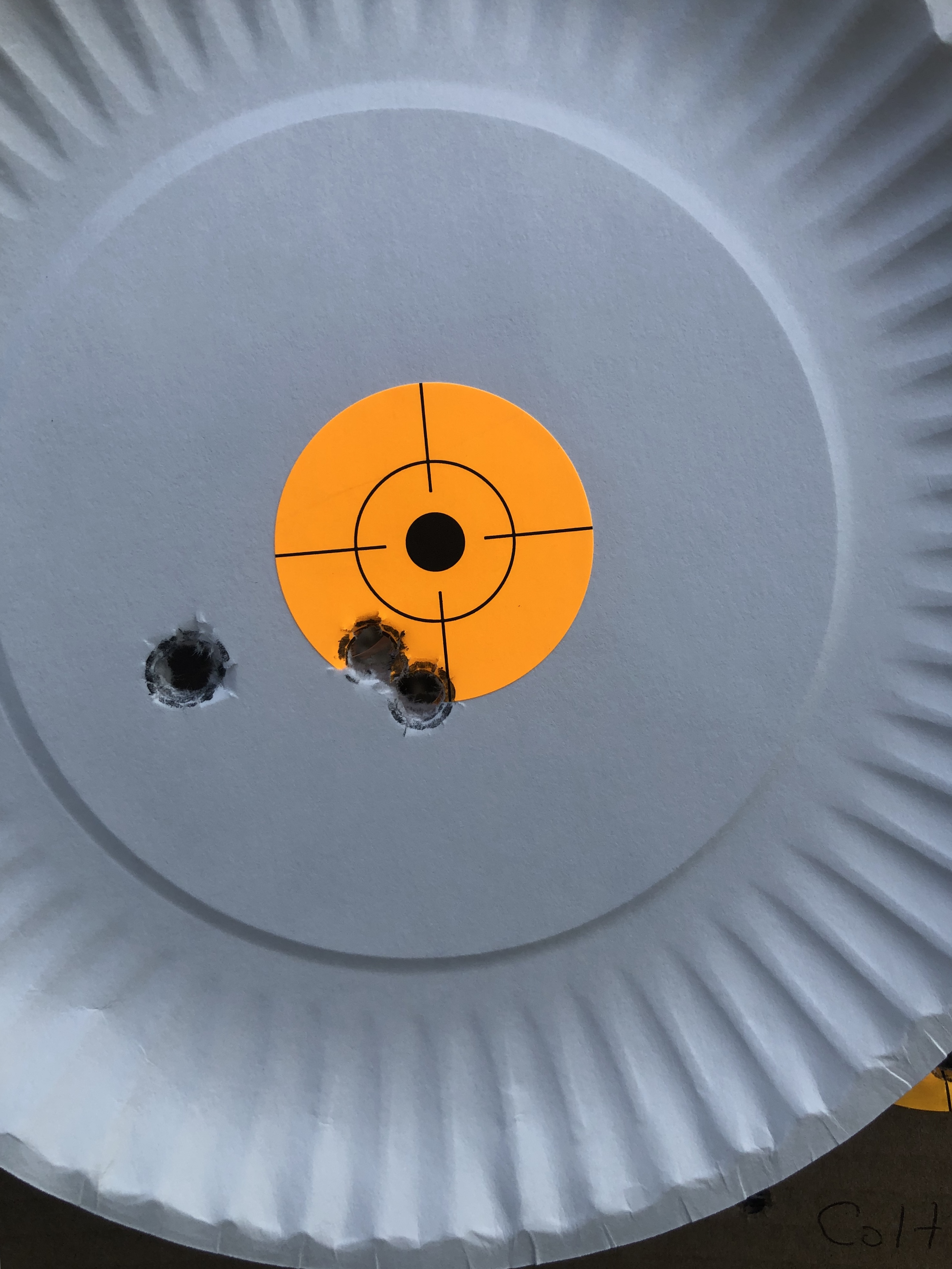 Colt LW Commander vs Springfield Defender Gov Model-d7d56b87-a006-4d84-9992-4f7a507a0674.jpeg