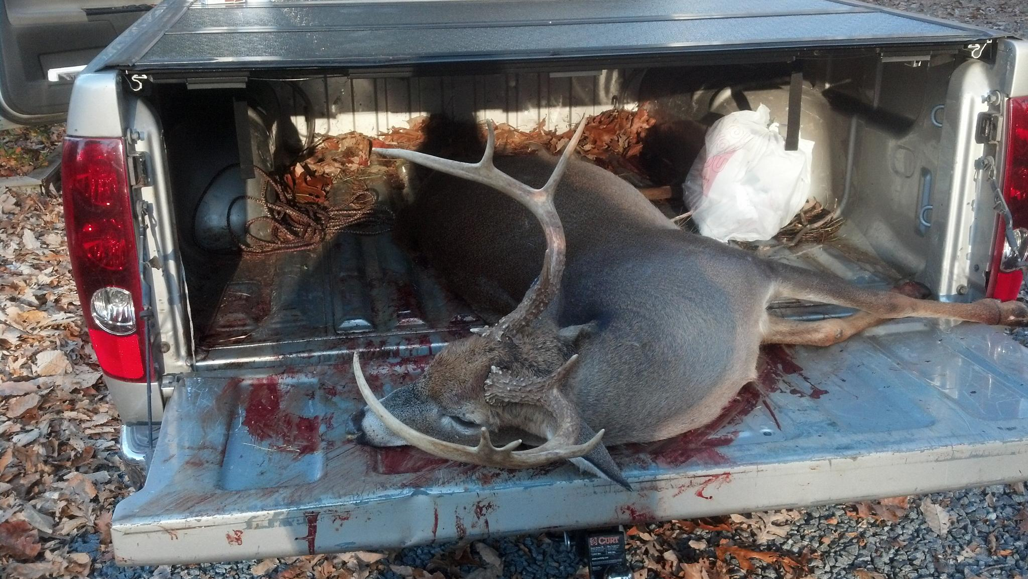 Shot the biggest little six point I ever done seen...-deer_mg.jpg