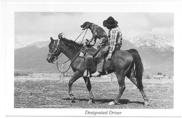 A man and his horse, his dog, his gun.-designated-driver.jpg