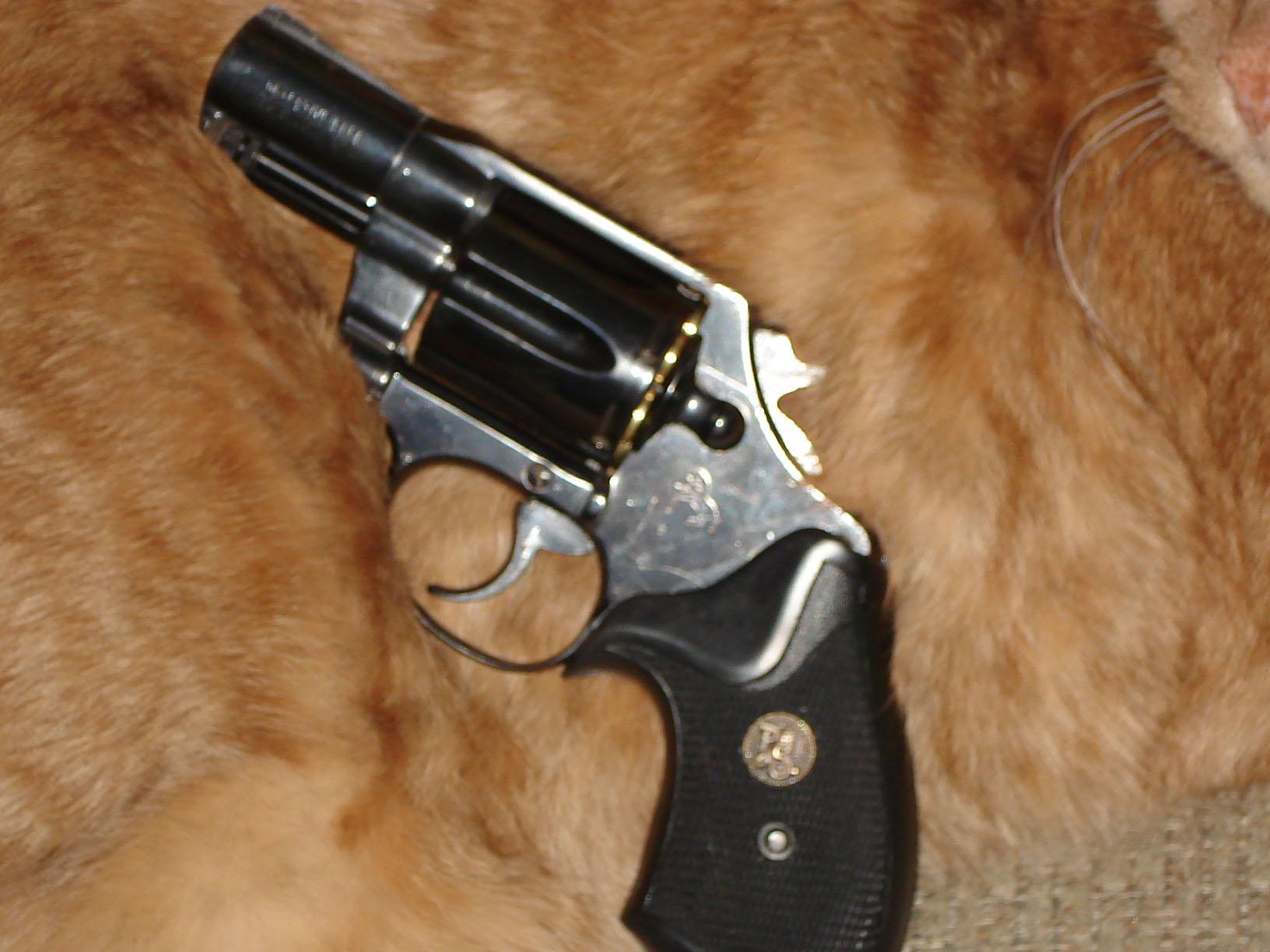 Colt Detective Special-detective-special-smaller.jpg