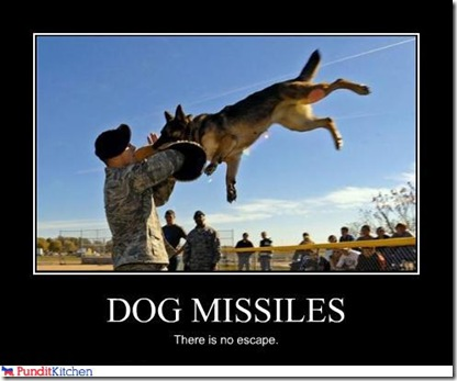 Warning to would be robbers-dog-missile.jpg