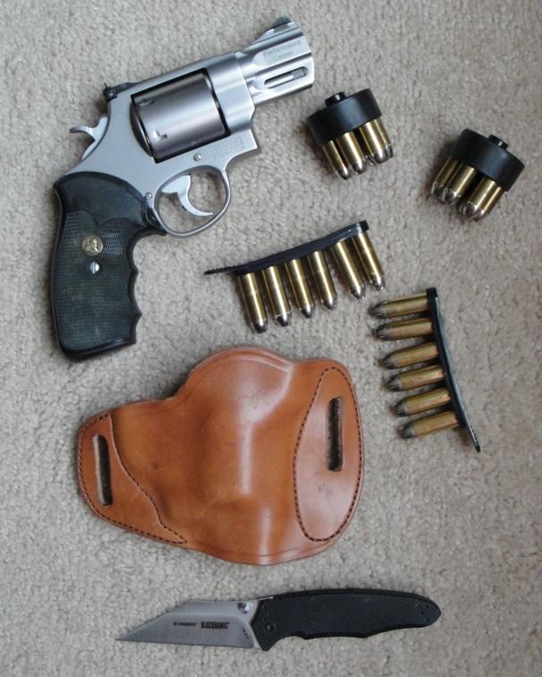 The 44 Magnum-dsc00327.jpg
