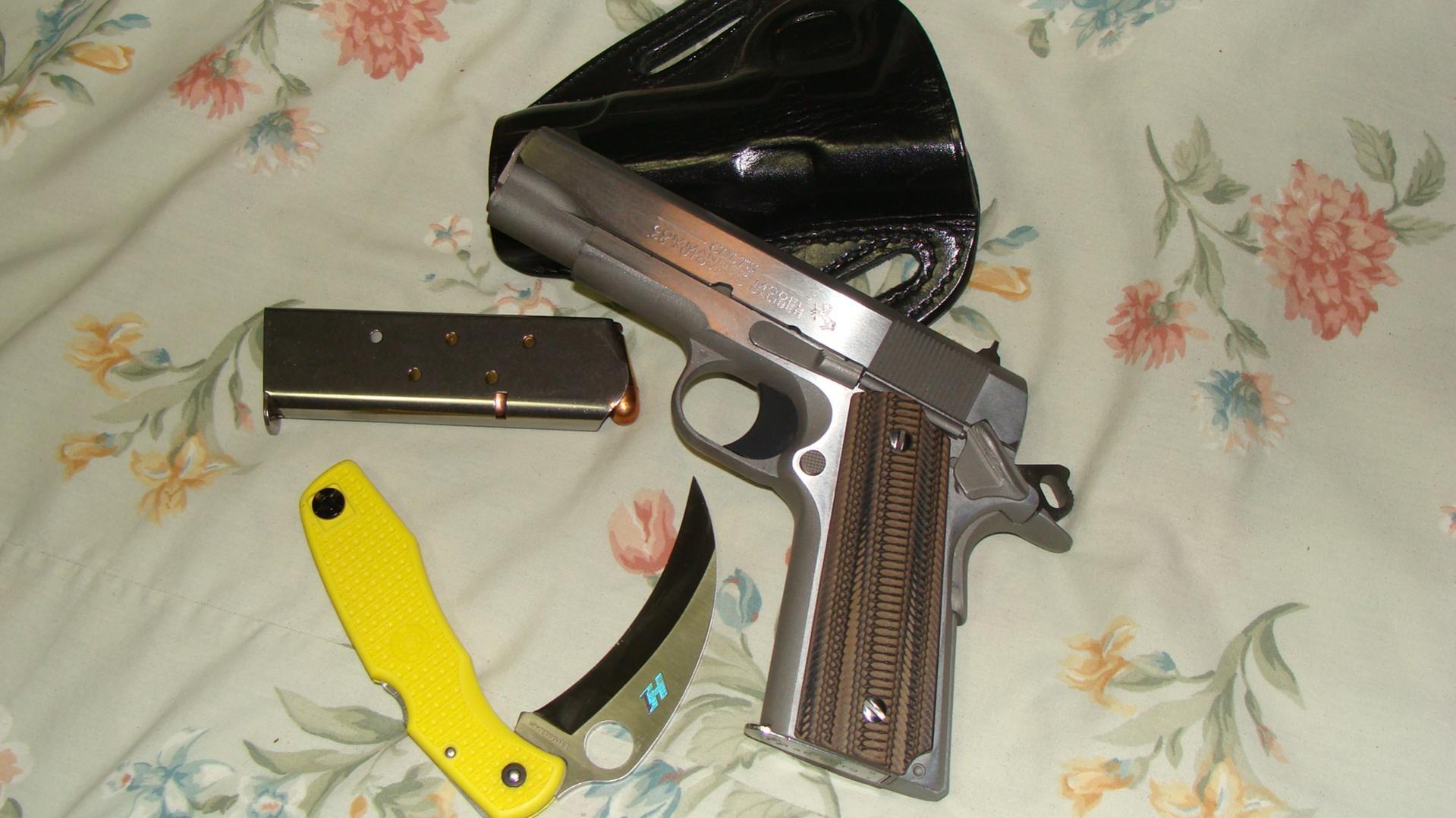 Grips for a 1911-dsc00604.jpg