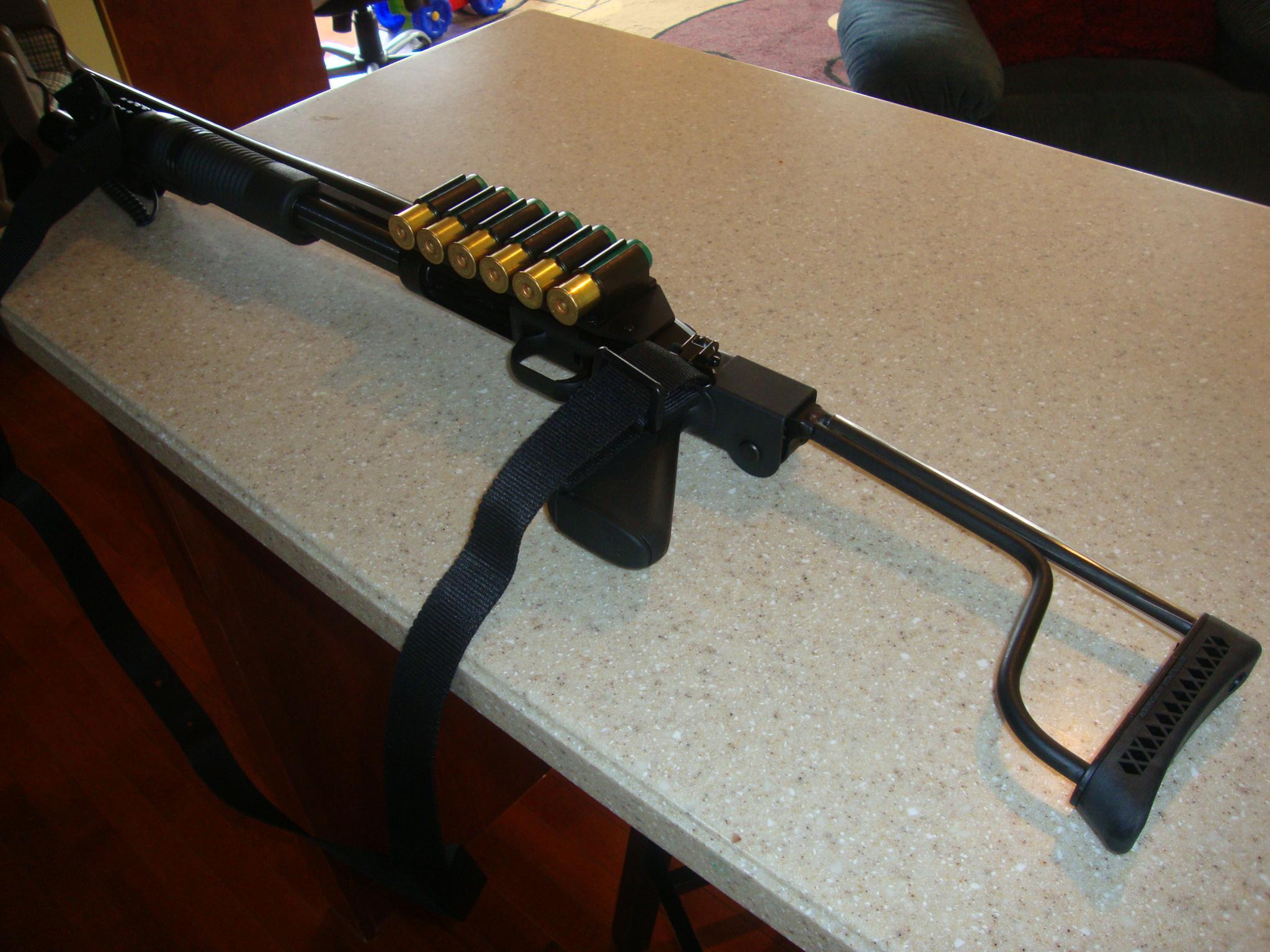 Should I get a shotgun or a handgun?-dsc01265.jpg