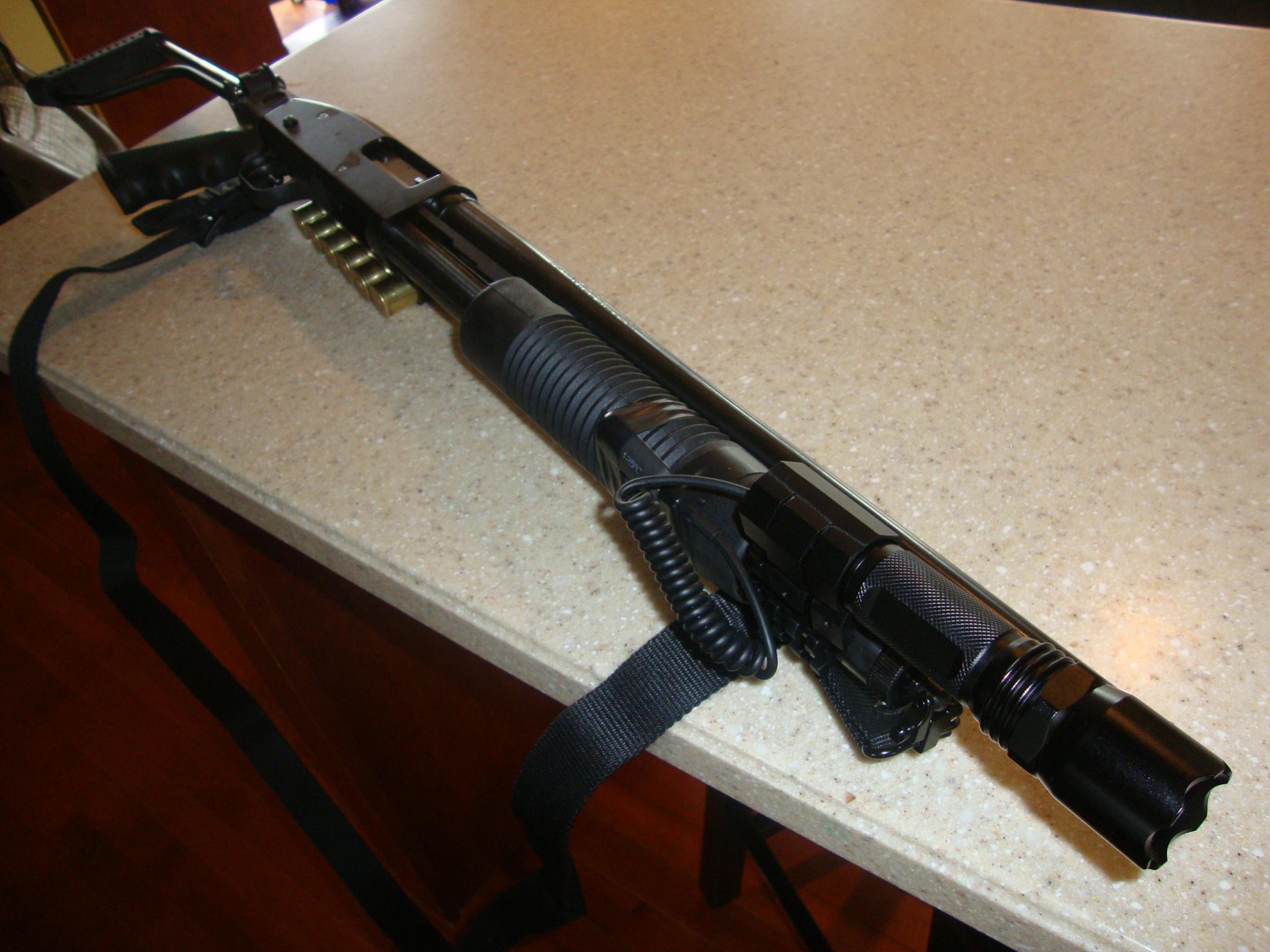 Should I get a shotgun or a handgun?-dsc01267.jpg