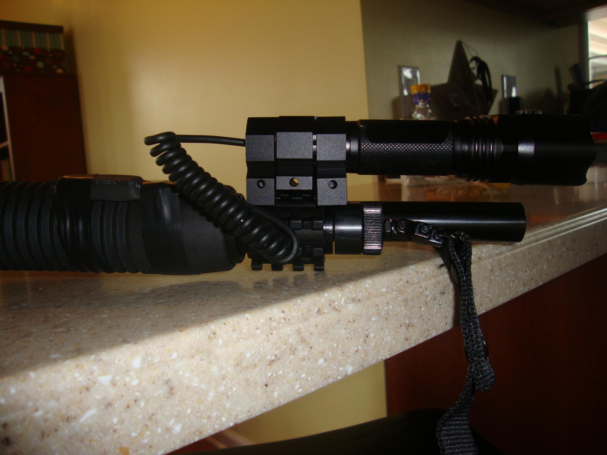 Should I get a shotgun or a handgun?-dsc01270.jpg