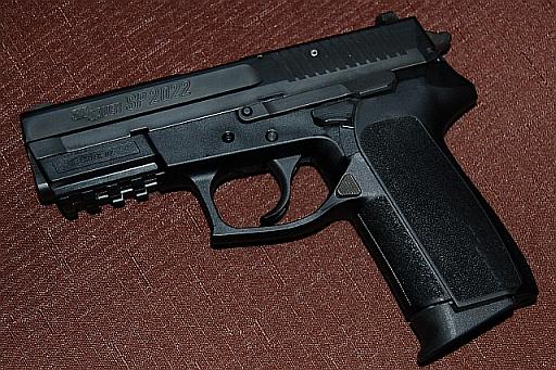 Seeking advice on gun choice.-dsc_3638_2.jpg